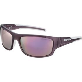 Alpina Testido Glasses nightshade matt-white/rose-gold mirror